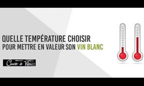 Quelle température choisir pour mettre en valeur son vin blanc